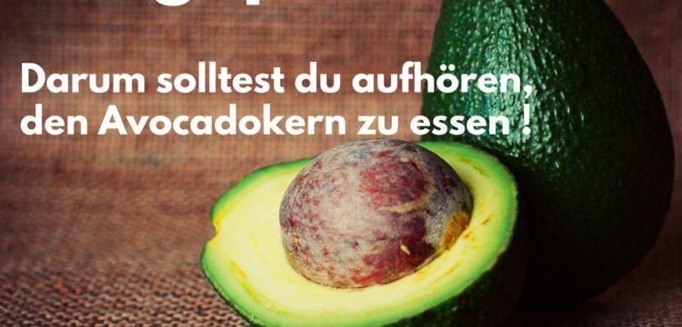 Aufgepasst, darum solltest du aufhören, den Avocadokern zu essen