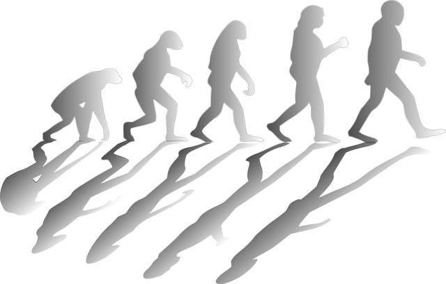 Ist die Paleo-Diät gefährlich? Steinzeit war gestern!