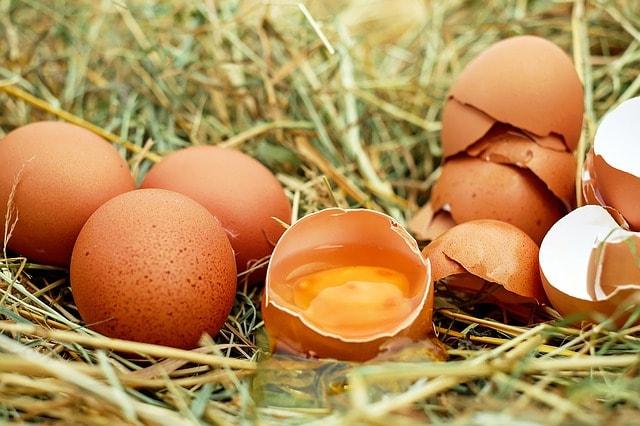 Kannst du zu viele Eier essen? Wie viel sind zu viele? Sind Eier gesund oder Cholesterinbomben?