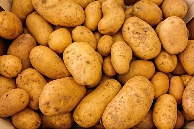 Ist es OK, keimende Kartoffeln zu essen und wie kannst du sie länger haltbar machen?